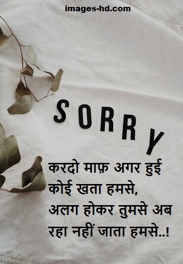 100+ Sorry quotes in Hindi,  Sorry quotes for bf, for gf & best friend.