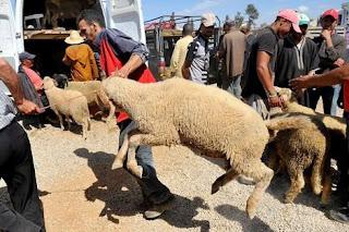 العثماني يكشف مصير عيد الأضحى