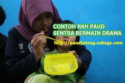 Contoh RKH Sentra Bermain Drama PAUD Tema Binatang