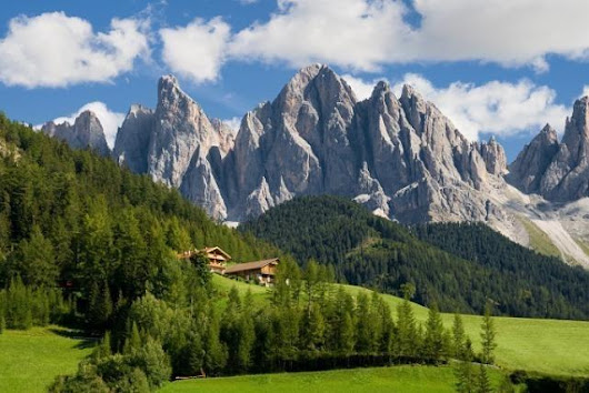 Medicine of the forest : September Courmayeur Italy