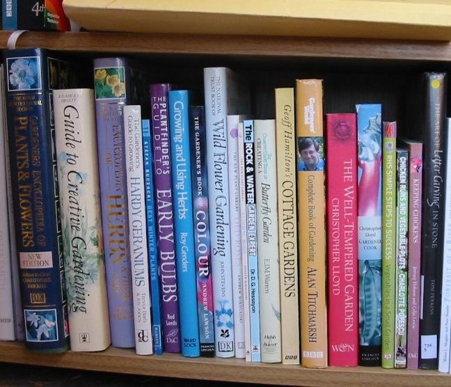 Bookshelves For Books Gallery For > Childrens Library Bookshelves