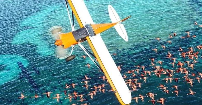 How to switch servers in Microsoft Flight Simulator