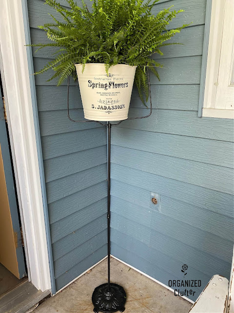 Photo of a birdcage stand repurposed as a fern stand