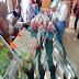 Kreasi Mahasiswa KKN Dipamerkan di Uniqbu Fair