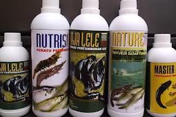Manfaat Probiotik Bacillus Cereus Untuk Nila