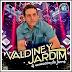 Valdiney Jardim - Vol. 07