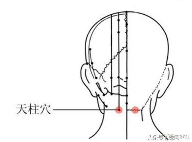 對記憶力有幫助的幾個穴位,記憶不好的常按按((緩解眼部疲勞)