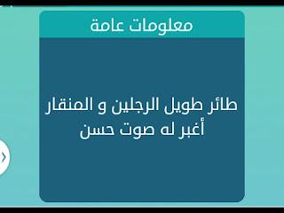 حل لغز ماهو الشي الذي يتكلم جميع لغات العالم من 5 حروف