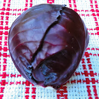 http://www.ufseeds.com/Red-Acre-Cabbage-Seeds.item