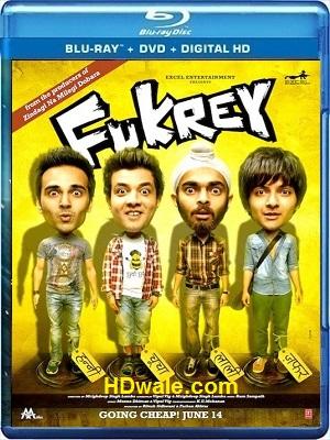 Fukrey Movie Download Free (2013) Full HD 720p BluRay 1GB