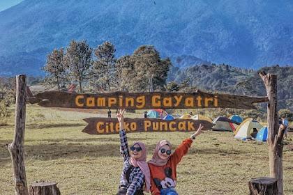 Lokasi dan Harga Tiket Masuk Camping Gayatri Citeko Puncak Bogor
