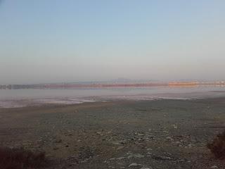 Larnaka Salt Lake after the first rain of the season