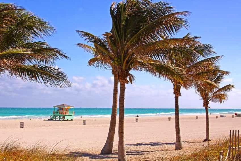 Desktop Wallpapers View Of Miami City