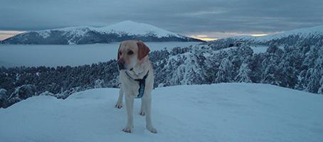 Tao y nieve y nimbos grisáceos y mar de nubes y al fondo la cumbre de Peñalara.