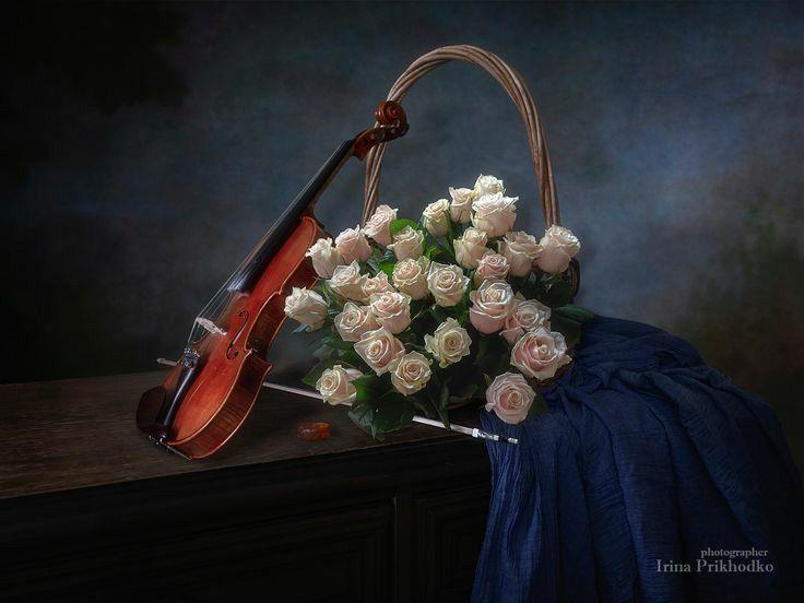 La aniversară. Trandafiri sau crizanteme?!