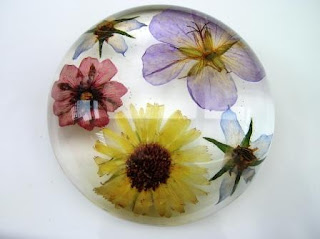 Pressed flowers within a paperweight