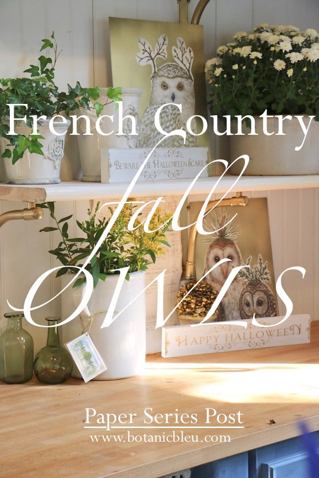 French Country fall owl paper placemats offer unusual twist to Halloween decor