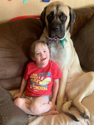 Best Dogs for Kids with special needs