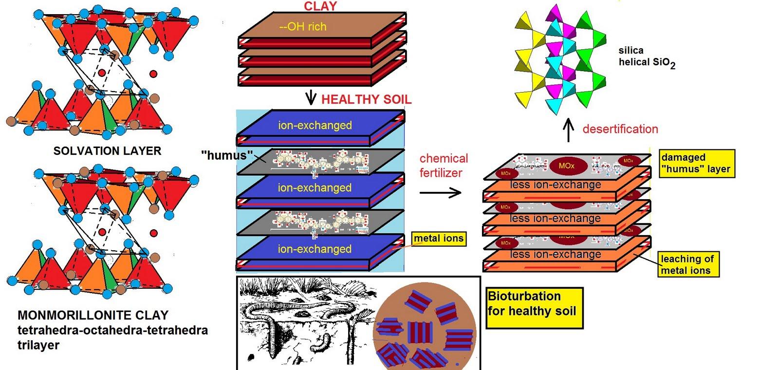 Dangers of Heavy Metals & How to Do a Heavy Metal Detox