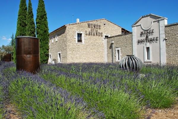 Honeymoon, france, review, ทริป, ฝรั่งเศส, รีวิว, ฮันนีมูน, โพรวองซ์, Provence,lavender museum