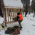 У київських лісах встановили 20 годівниць для косуль та оленів - сайт Голосіївського району