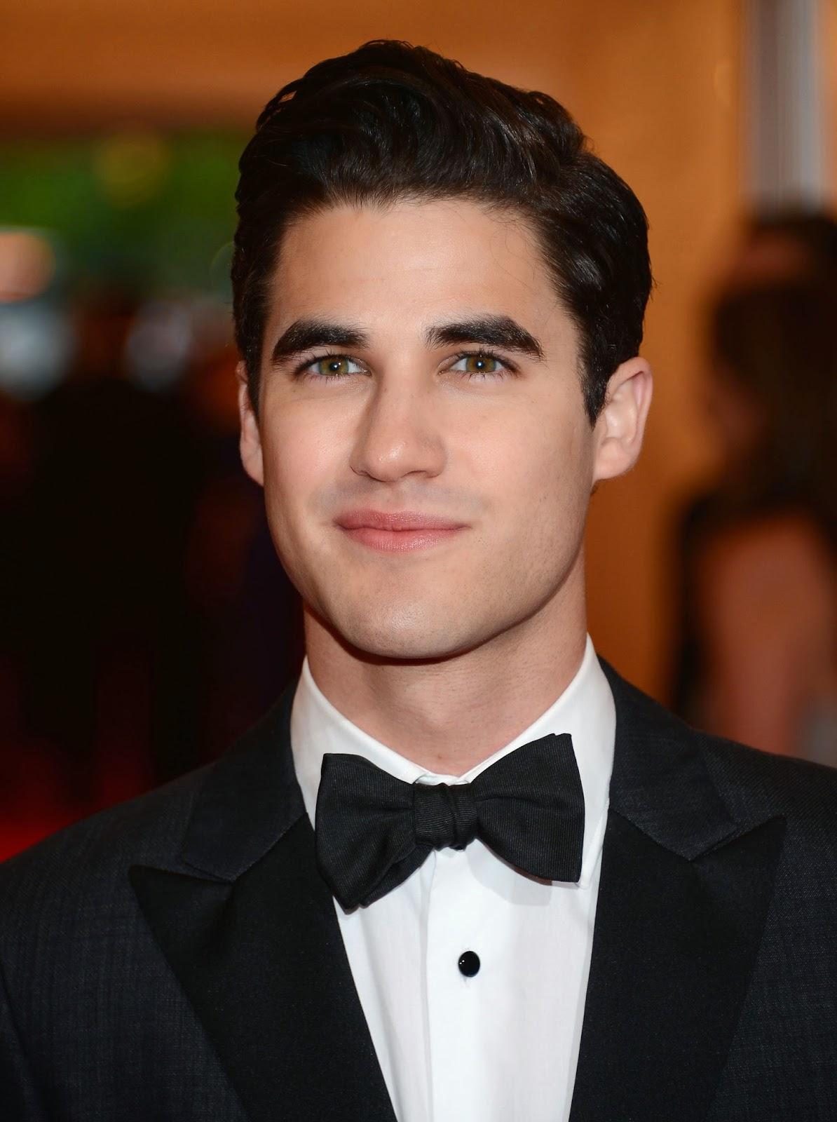 Glee Star Darren Criss Says Warblers Album Will Drop in