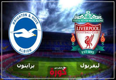 مشاهدة مباراة ليفربول وبرايتون بث مباشر اليوم