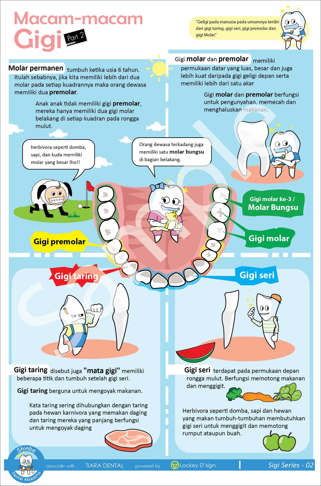 Hidup Sehat Poster Penyuluhan Kesehatan Gigi Dan Mulut