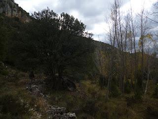 Barranco del río Ablanquejo