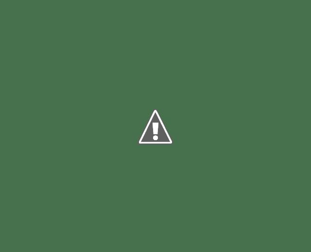 Les résultats avec des featured snippets ont un taux de clics de 5,3 points de pourcentage en dessous de la moyenne.