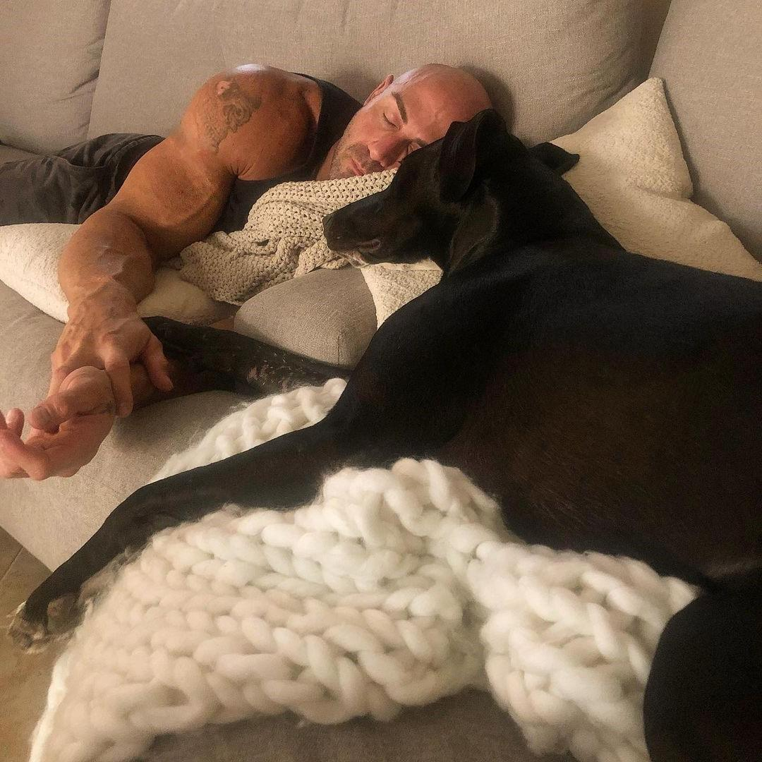 handsome-masculine-bald-man-aaron-williamson-bald-alpha-male-daddy-strong-arms-sleeping-dog-holding