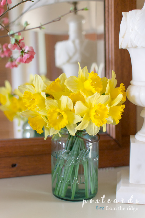 yellow daffodils in a blue mason jar vase