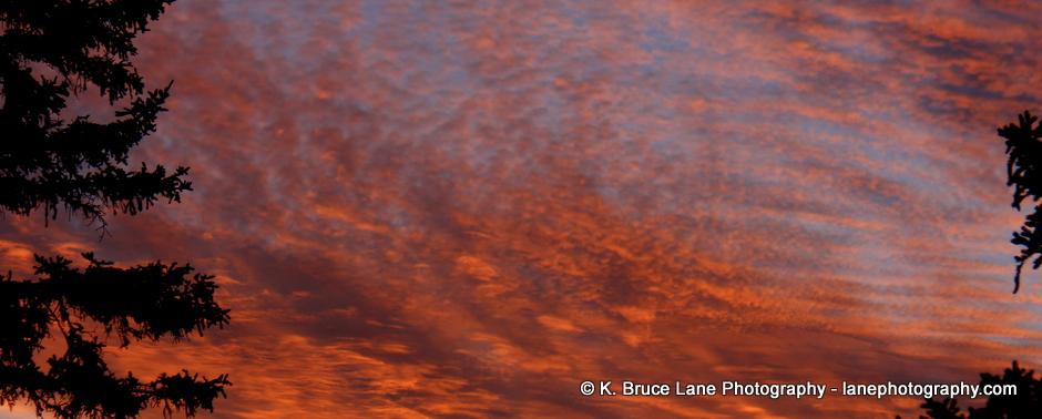 K. Bruce Lane - Photo of the Day