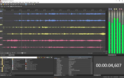 MAGIX Sound Forge Pro 13.0.96 / Suite 13.0.96 (Repack & Portable)