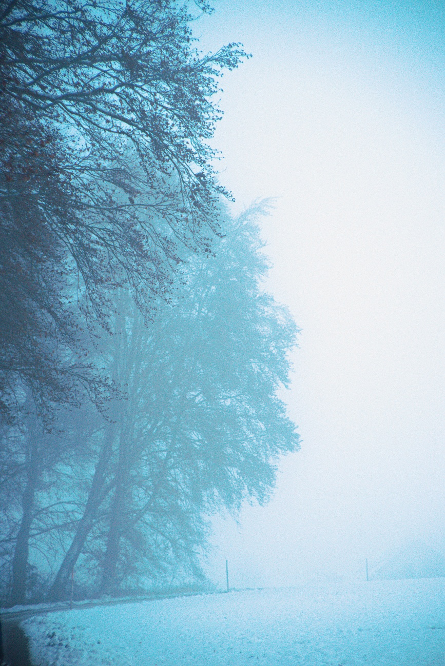 Schnee & Nebel (4)