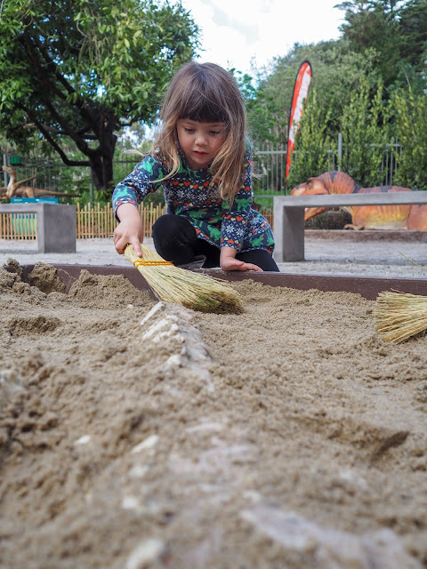 digging for dinosaur bones