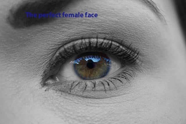 الوجه الأنثوي المثالي
