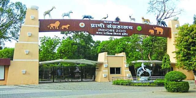 कोरोना के कारण इंदौर का जू बंद | INDORE NEWS