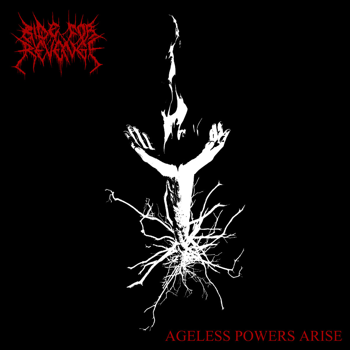 Finnish Black Metal Terrorism: Ride For Revenge