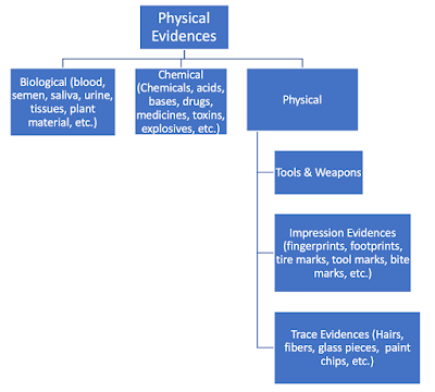 physical evidences types
