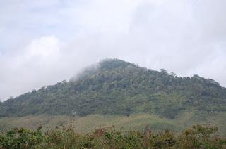 Gunung Tumpangpitu menyimpan tambang emas.