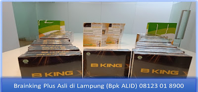 PROMOSI, 08123 01 8900 (Bpk. Alid), Brainking Plus Asli di lampung