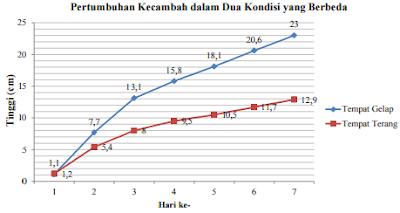 Pertumbuhan Kecambah dalam Dua Kondisi yang Berbeda www.jawabanbukupaket.com