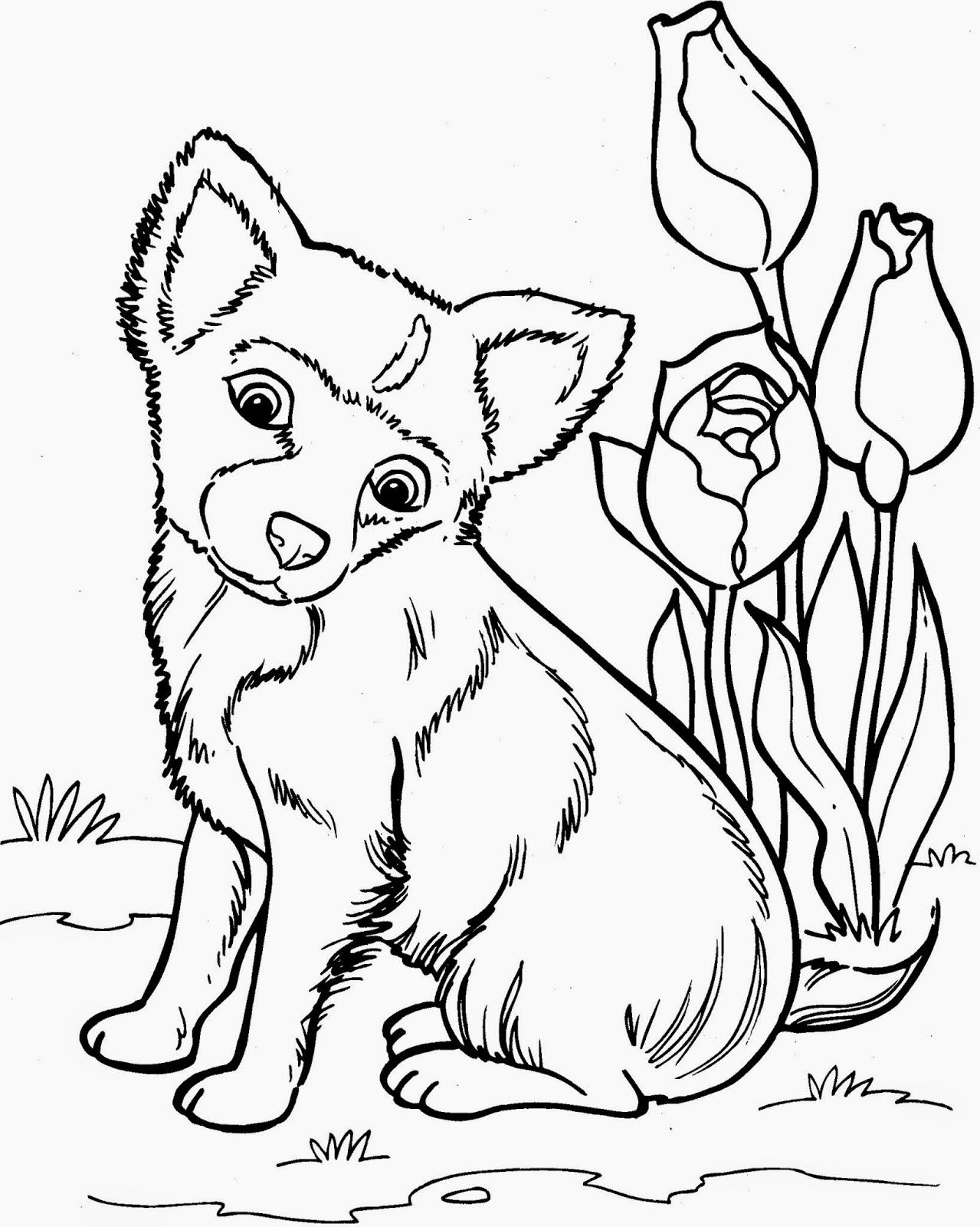 kleurplaat hondekop ausmalbilder zum ausdrucken