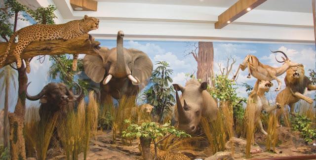 Museum ini ialah salah satu kawasan menarik yang berada di Kota Medan Museum Rahmat Internasional Wildlife Galery