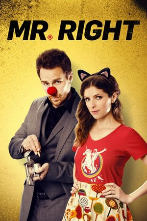 Poster Mr. Right 2015