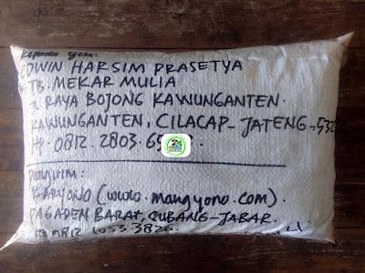 Benih Ketan Pesanan   EDWIN HARSIM PRASETYA Cilacap, Jateng.  (Benih Sesudah di Packing)