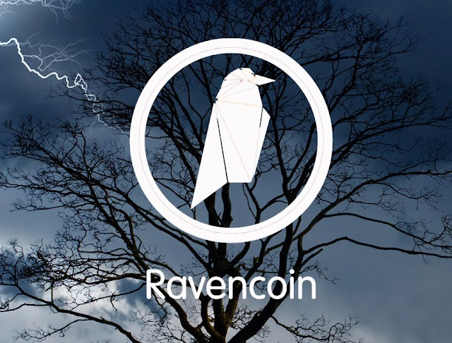 Ravencoin RVN is a solid long-term investment