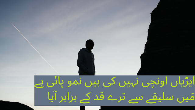 urdu shayari - poetry in urdu - 2 line poetry for facebook and whatsapp status- Attitude shayari