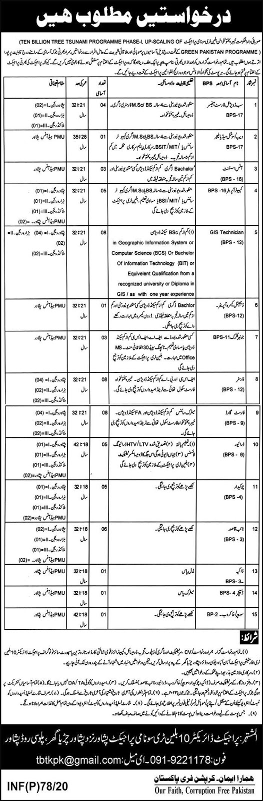 Billion Tree Tsunami Project KPK Jobs 2020
